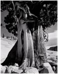 Juniper_Lake_Tenaya_1937_(JI-C-1G)_large